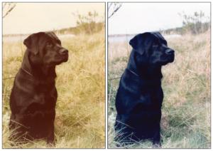 Foto före och efter med Charlie